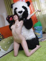 Похотливая панда - 20 картинка