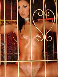Обнажённая пленница - 8 картинка