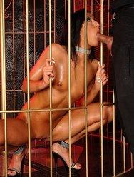 Обнажённая пленница - 11 картинка