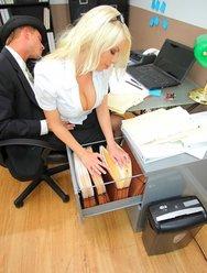 Горячая секретарша договорилась с налоговиком - 4 картинка
